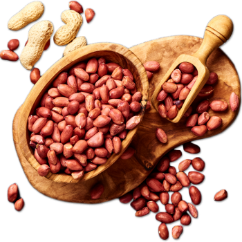 Groundnuts.png